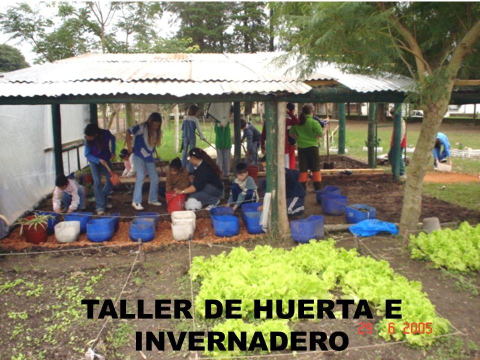 TALLER DE HUERTA E INVERNADERO