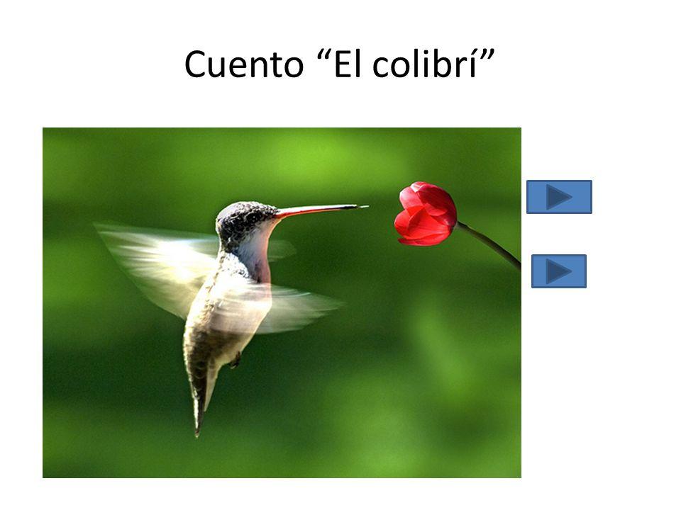 Cuento El colibrí