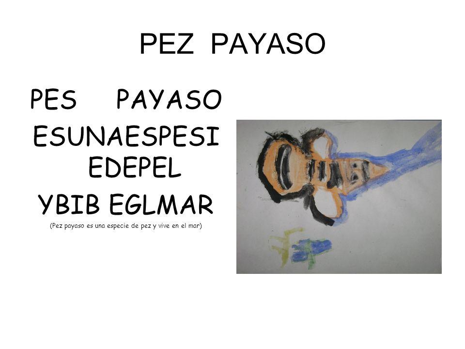 (Pez payaso es una especie de pez y vive en el mar)