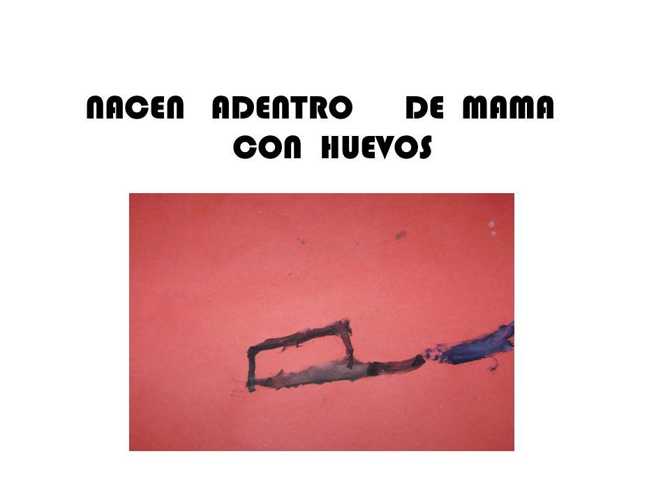 NACEN ADENTRO DE MAMA CON HUEVOS