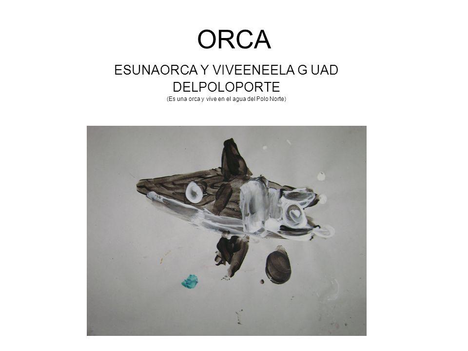 ORCA ESUNAORCA Y VIVEENEELA G UAD DELPOLOPORTE