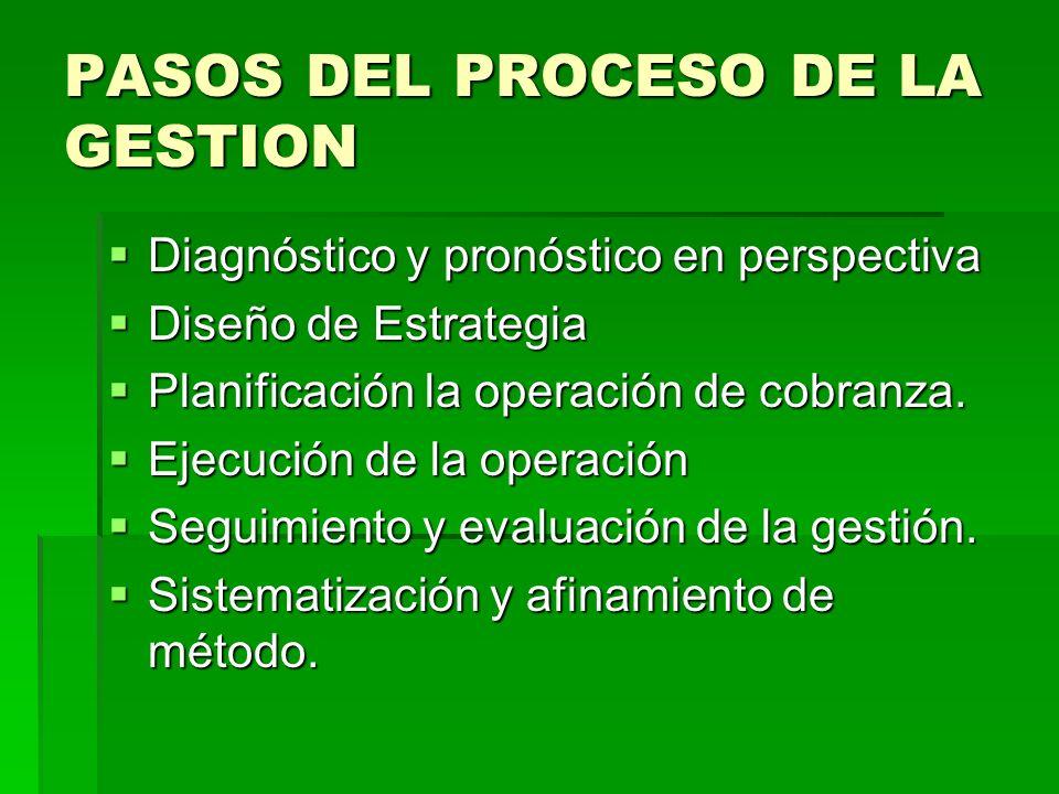 PASOS DEL PROCESO DE LA GESTION