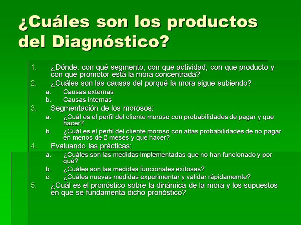 ¿Cuáles son los productos del Diagnóstico