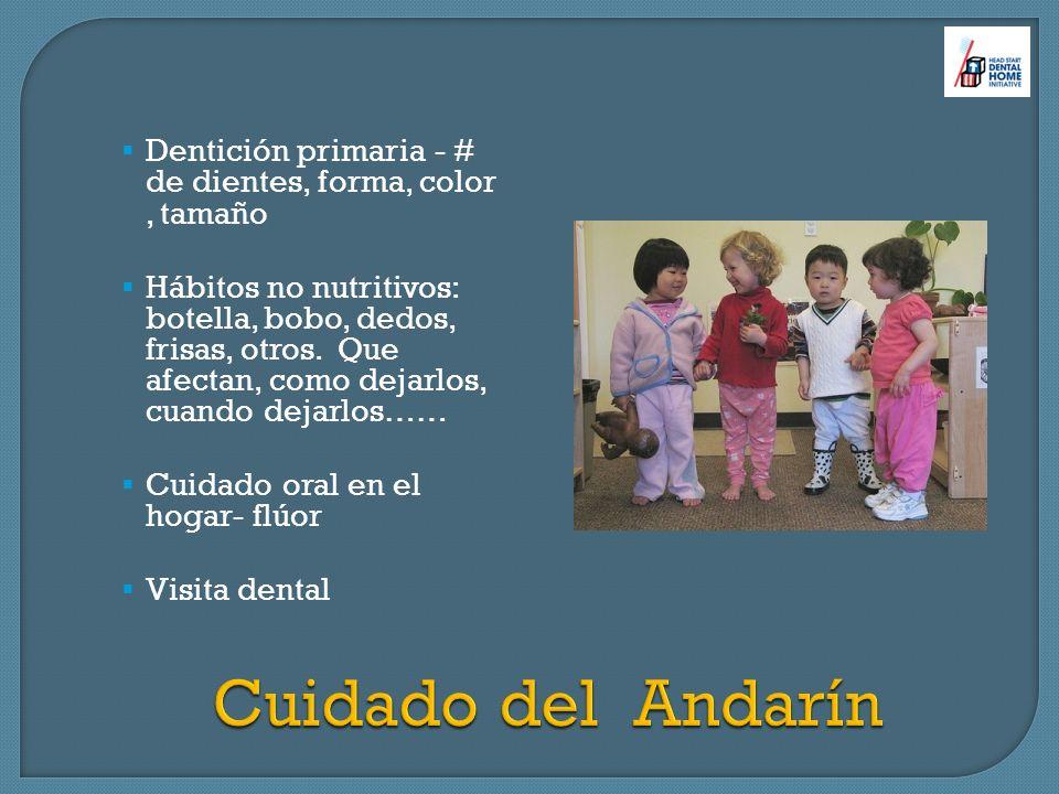 Dentición primaria - # de dientes, forma, color , tamaño