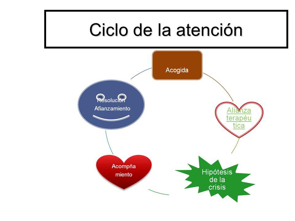 Ciclo de la atención 12