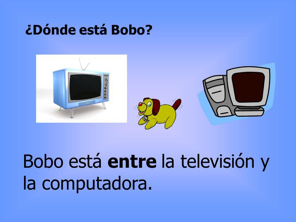 Bobo está entre la televisión y la computadora.