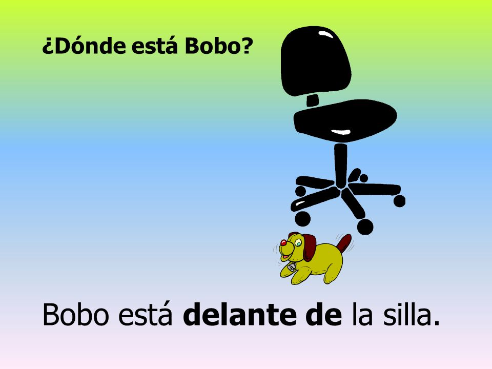 Bobo está delante de la silla.