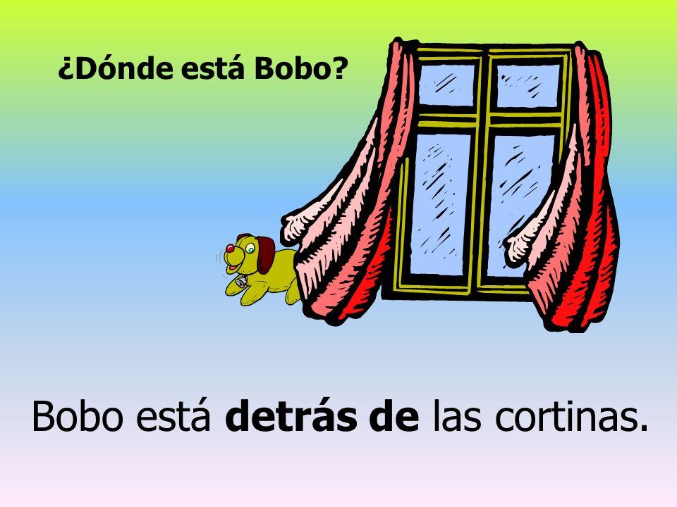 Bobo está detrás de las cortinas.