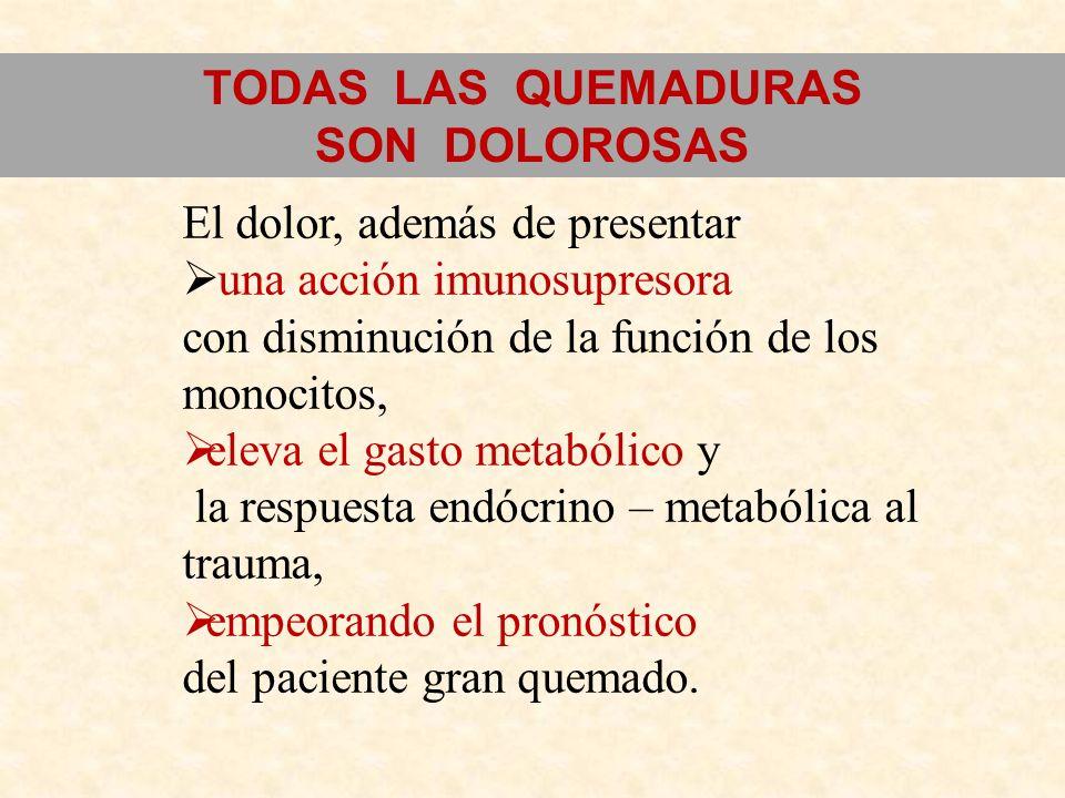 TODAS LAS QUEMADURAS SON DOLOROSAS. El dolor, además de presentar. una acción imunosupresora. con disminución de la función de los monocitos,