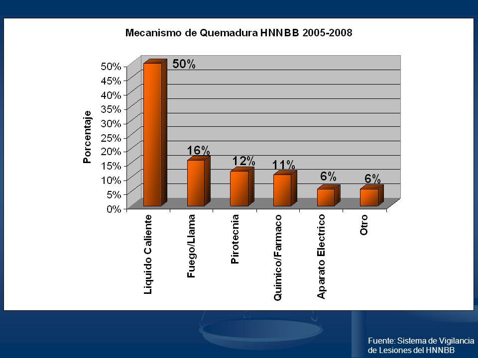 Fuente: Sistema de Vigilancia de Lesiones del HNNBB
