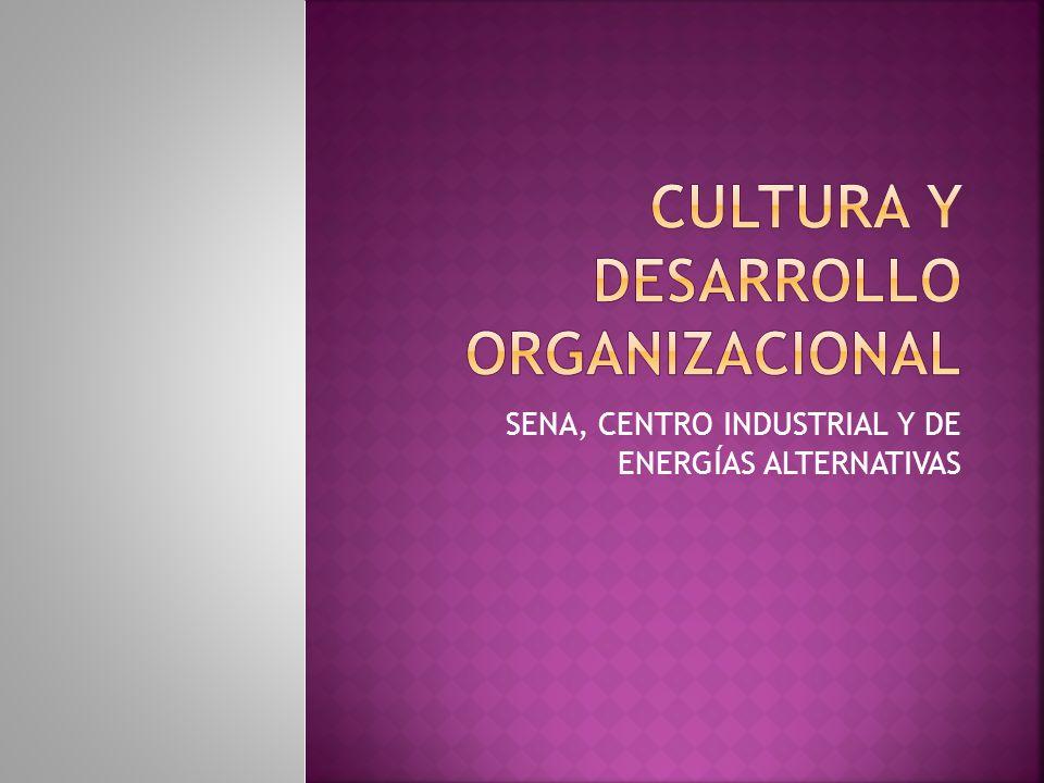 CULTURA Y DESARROLLO ORGANIZACIONAL