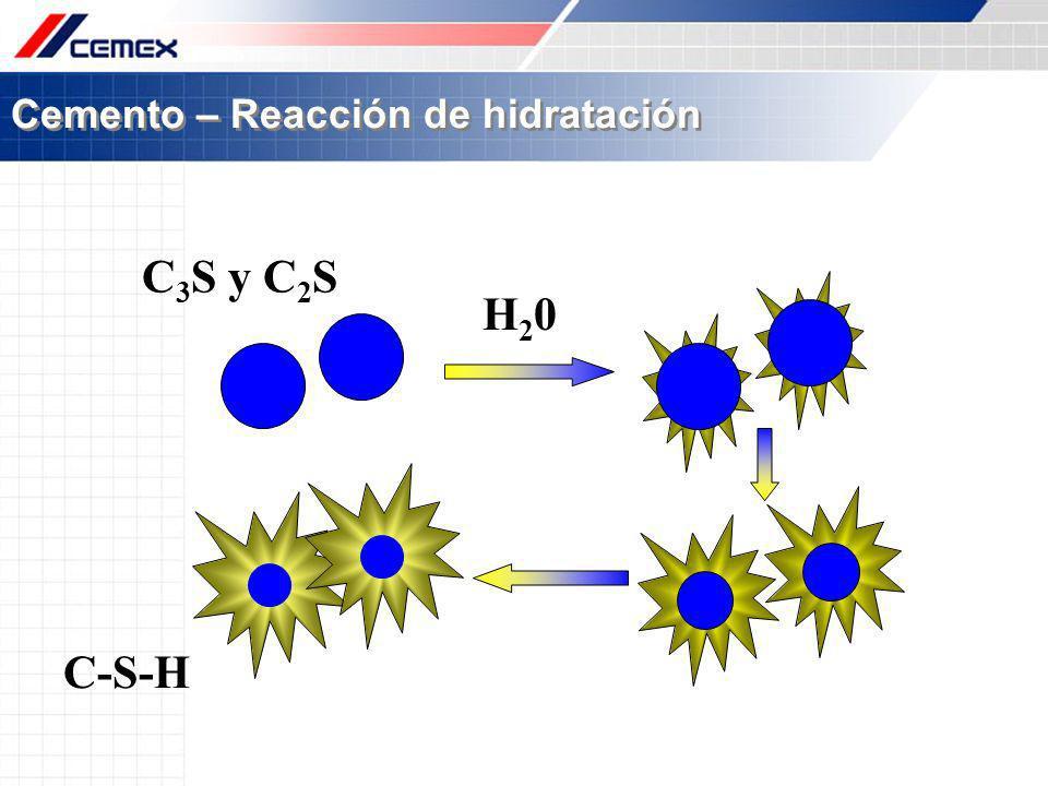 Cemento – Reacción de hidratación