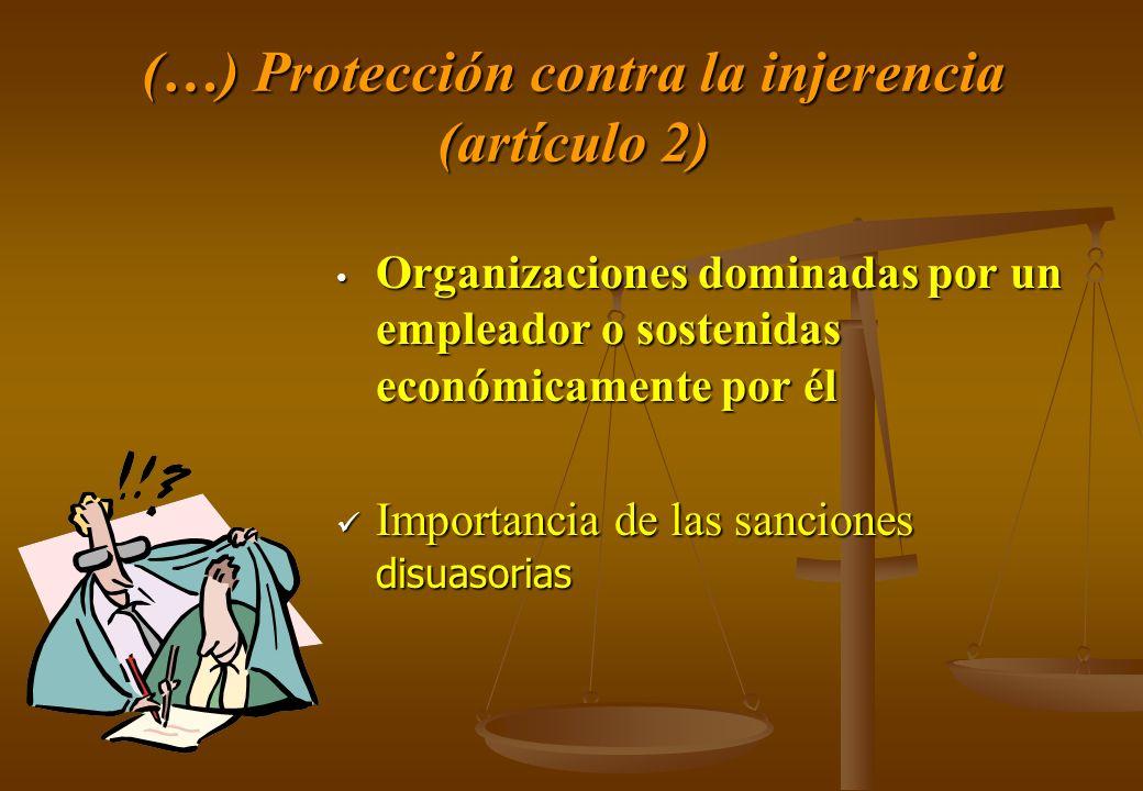 (…) Protección contra la injerencia (artículo 2)