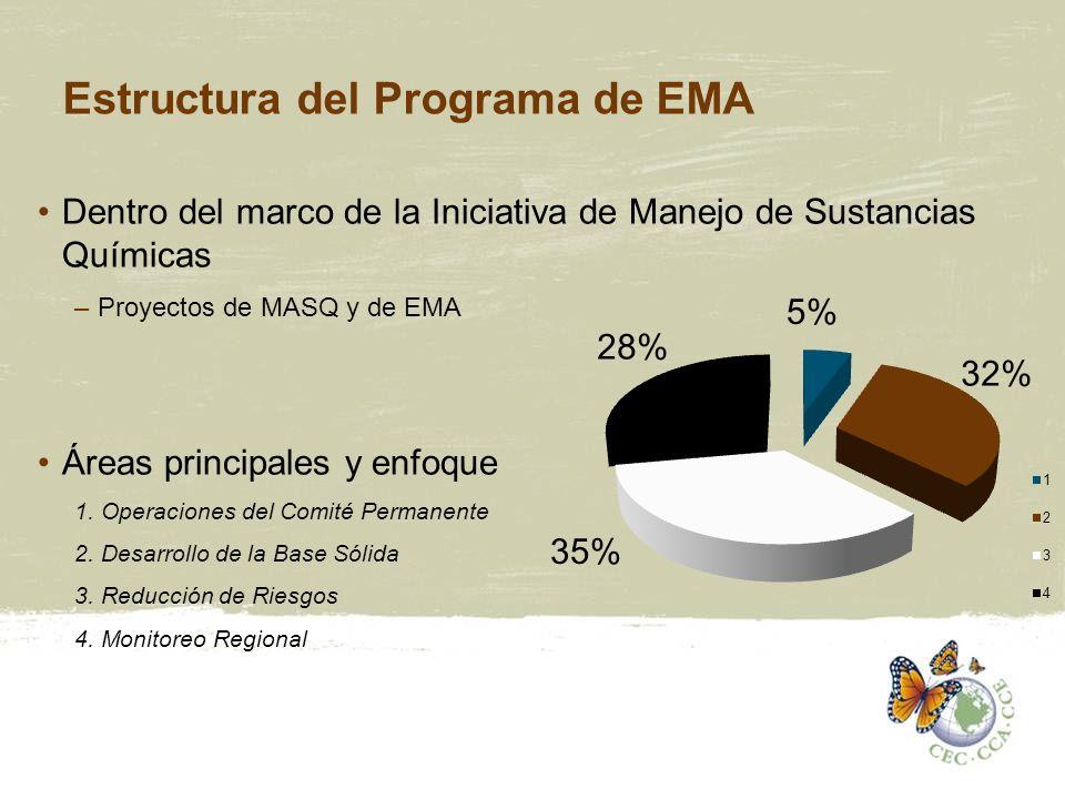 Estructura del Programa de EMA