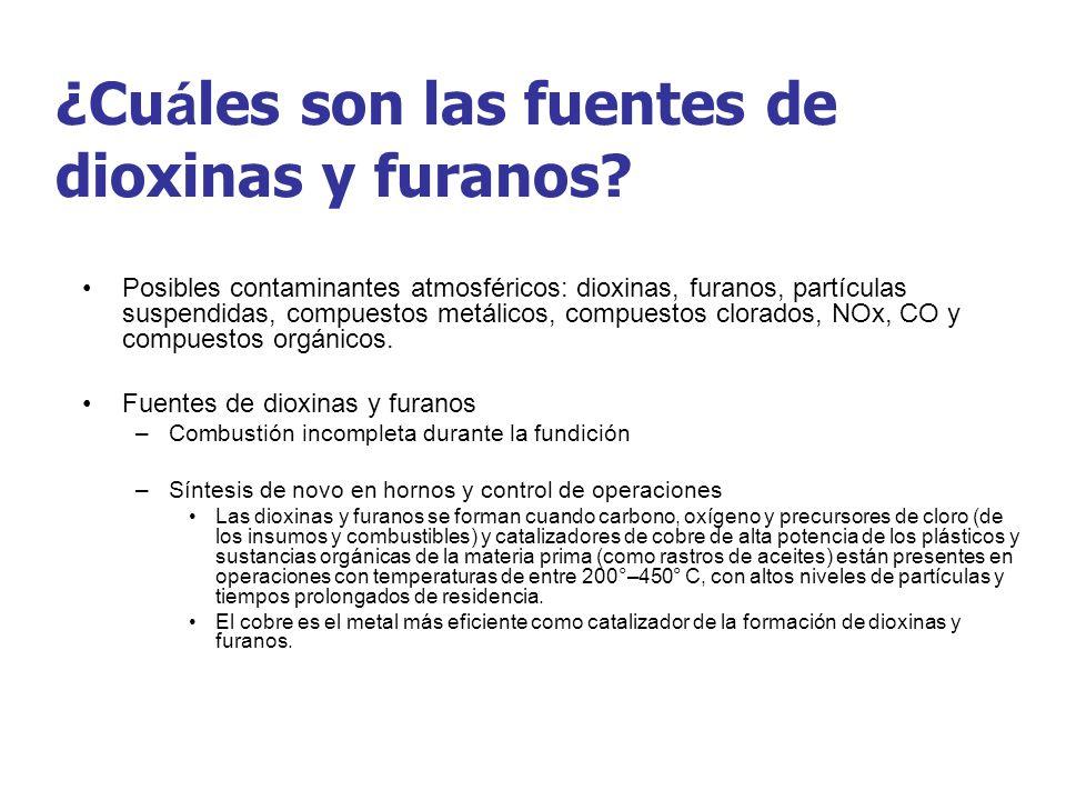 ¿Cuáles son las fuentes de dioxinas y furanos