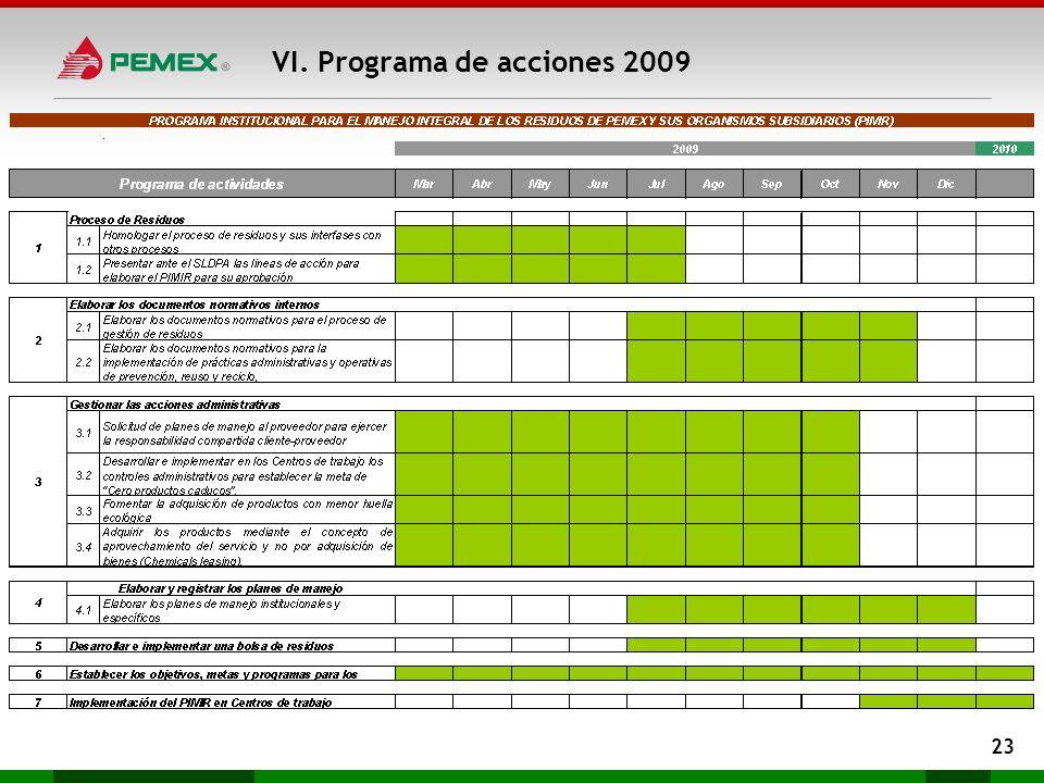 VI. Programa de acciones 2009