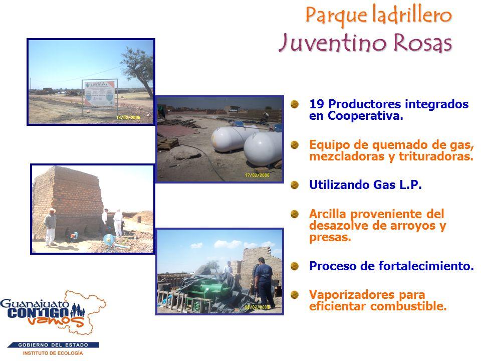 Parque ladrillero Juventino Rosas