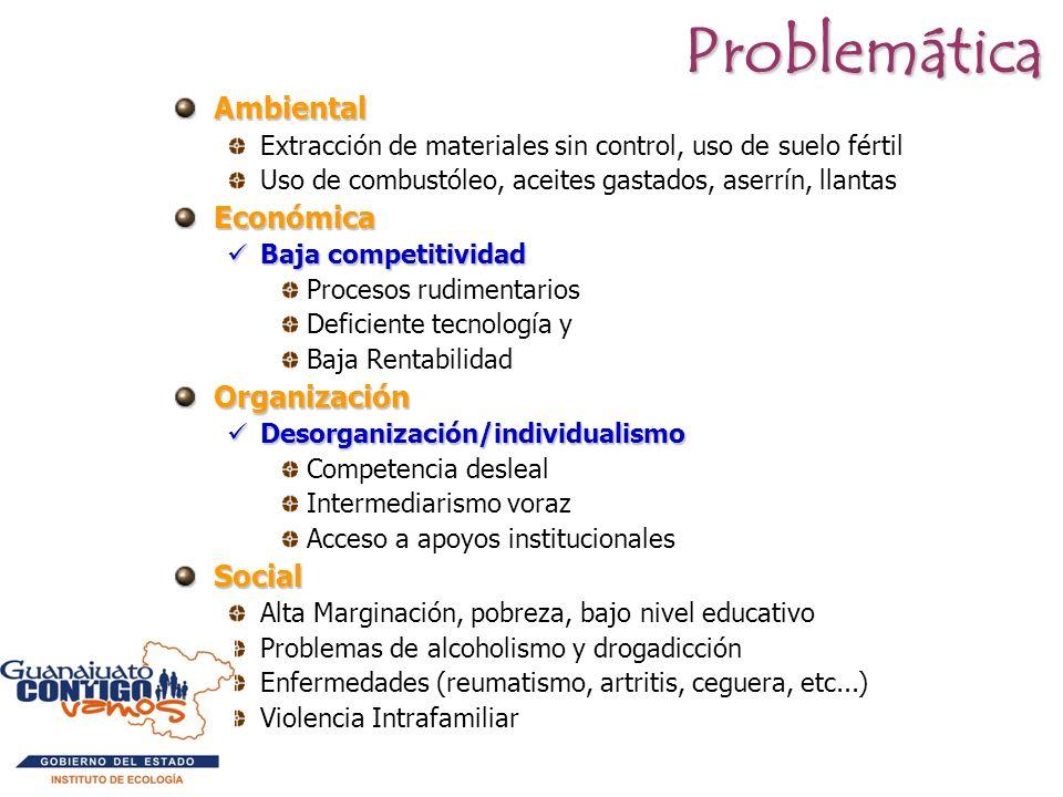 Problemática Ambiental Económica Organización Social