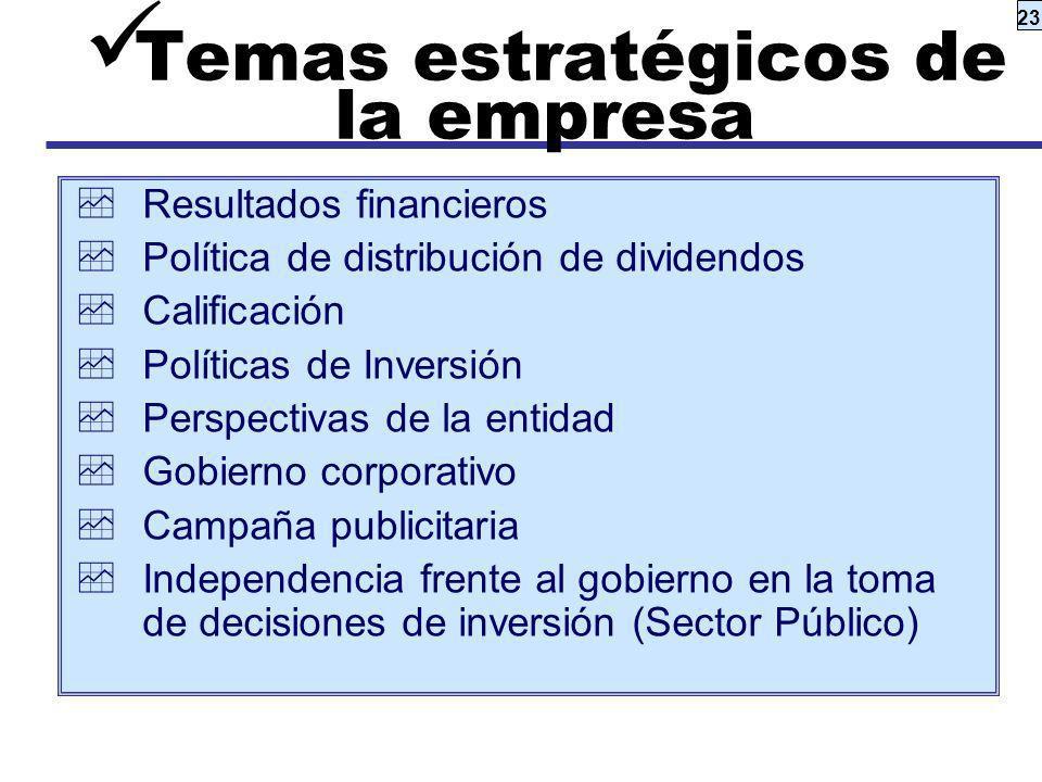 Temas estratégicos de la empresa