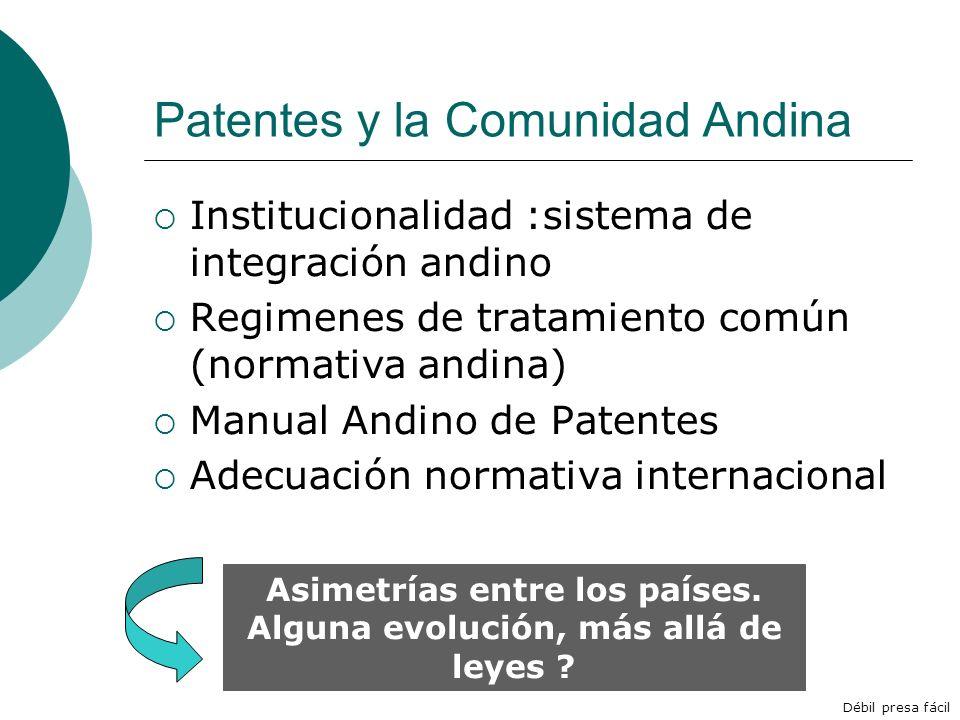 Patentes y la Comunidad Andina