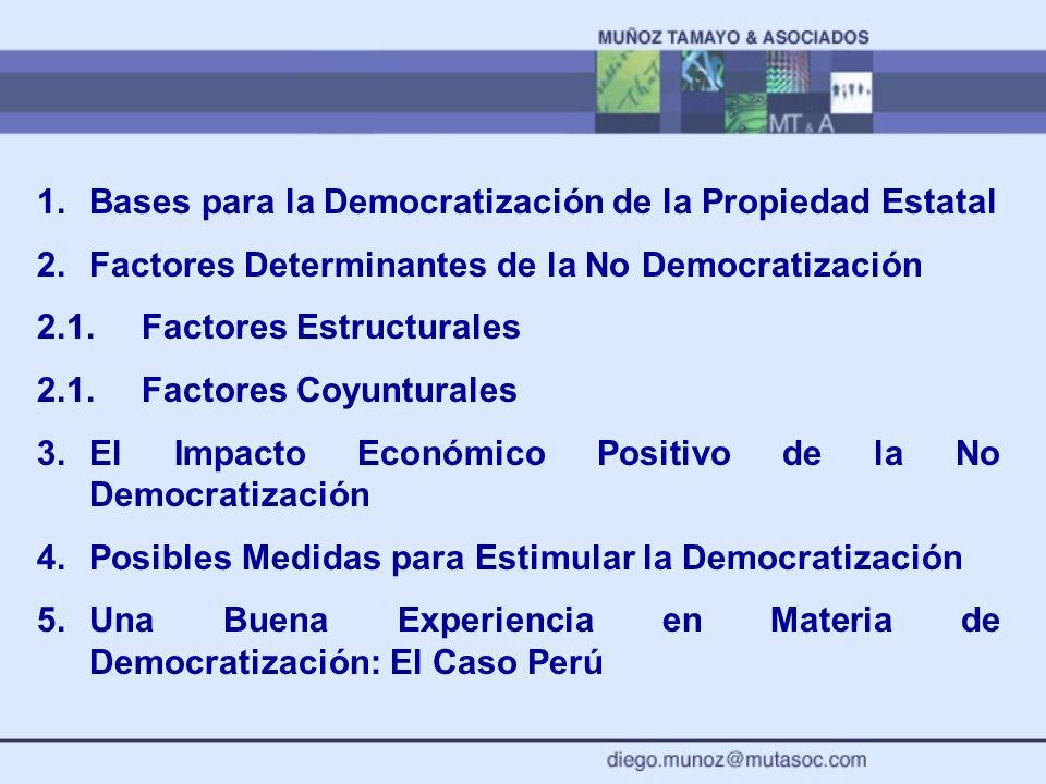 Bases para la Democratización de la Propiedad Estatal