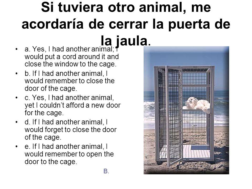 Si tuviera otro animal, me acordaría de cerrar la puerta de la jaula.