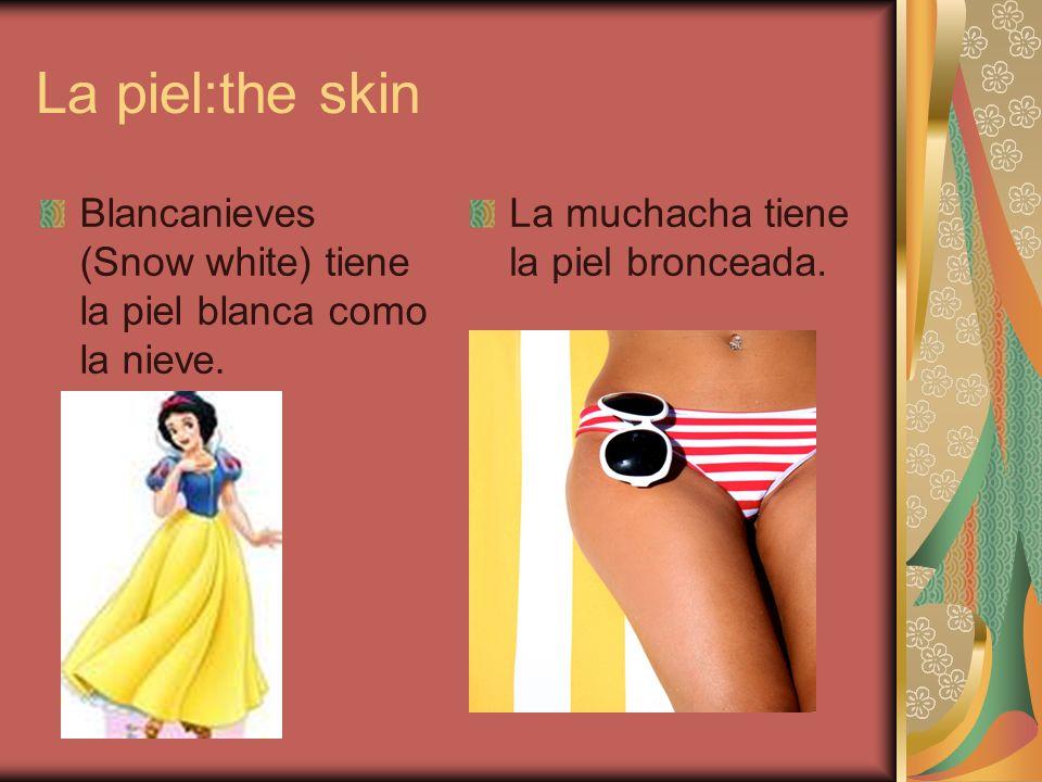 La piel:the skinBlancanieves (Snow white) tiene la piel blanca como la nieve.