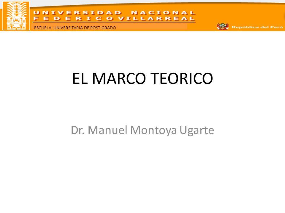 Dr. Manuel Montoya Ugarte