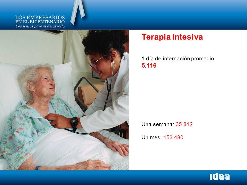 Terapia Intesiva 5.116 1 día de internación promedio