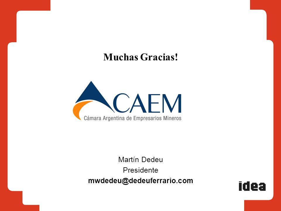 Muchas Gracias! Martín Dedeu Presidente mwdedeu@dedeuferrario.com