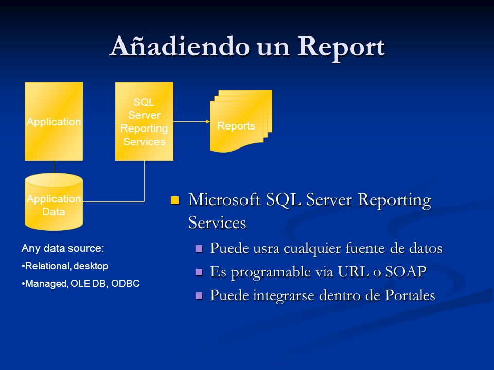 Añadiendo un Report Microsoft SQL Server Reporting Services