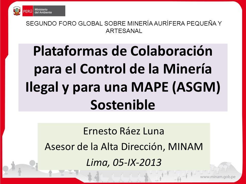 Ernesto Ráez Luna Asesor de la Alta Dirección, MINAM Lima, 05-IX-2013