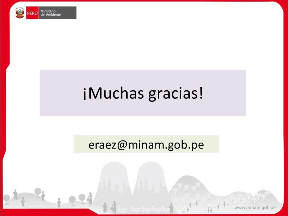 ¡Muchas gracias! eraez@minam.gob.pe