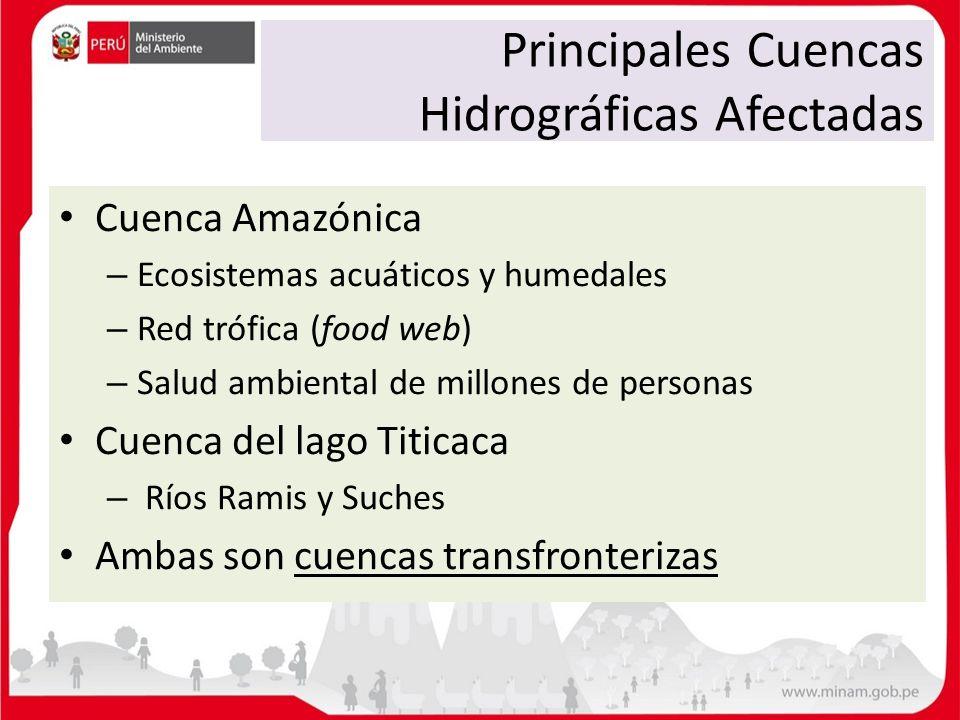 Principales Cuencas Hidrográficas Afectadas