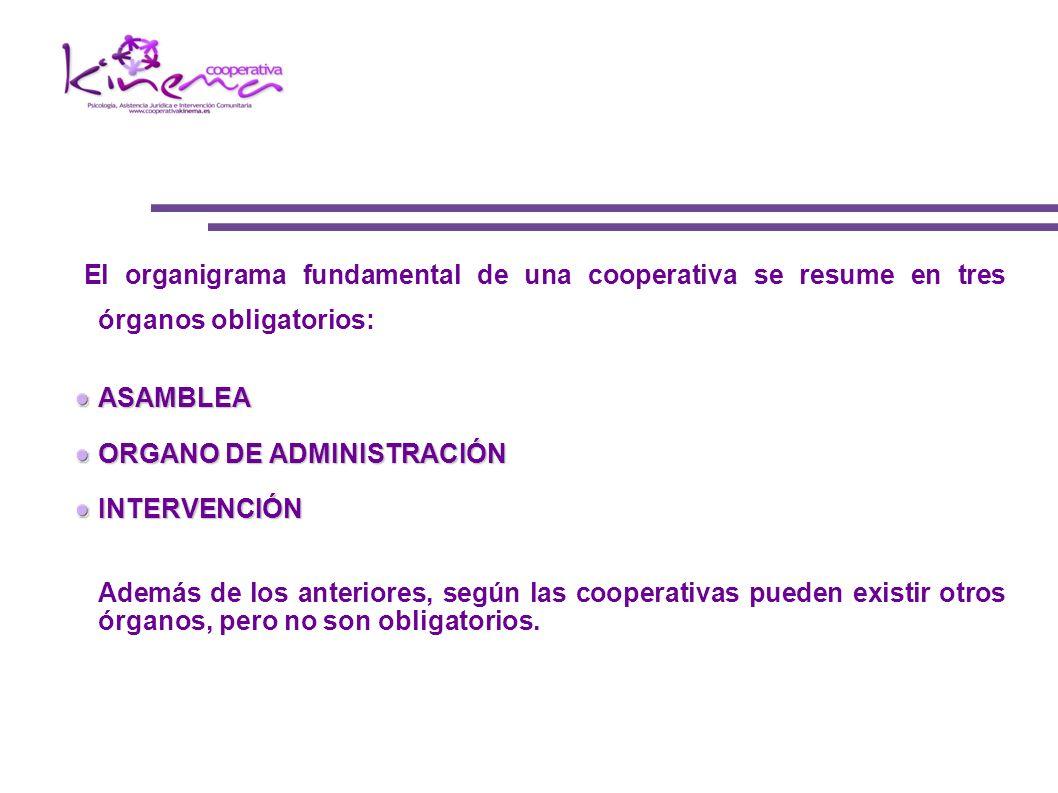 El organigrama fundamental de una cooperativa se resume en tres órganos obligatorios: