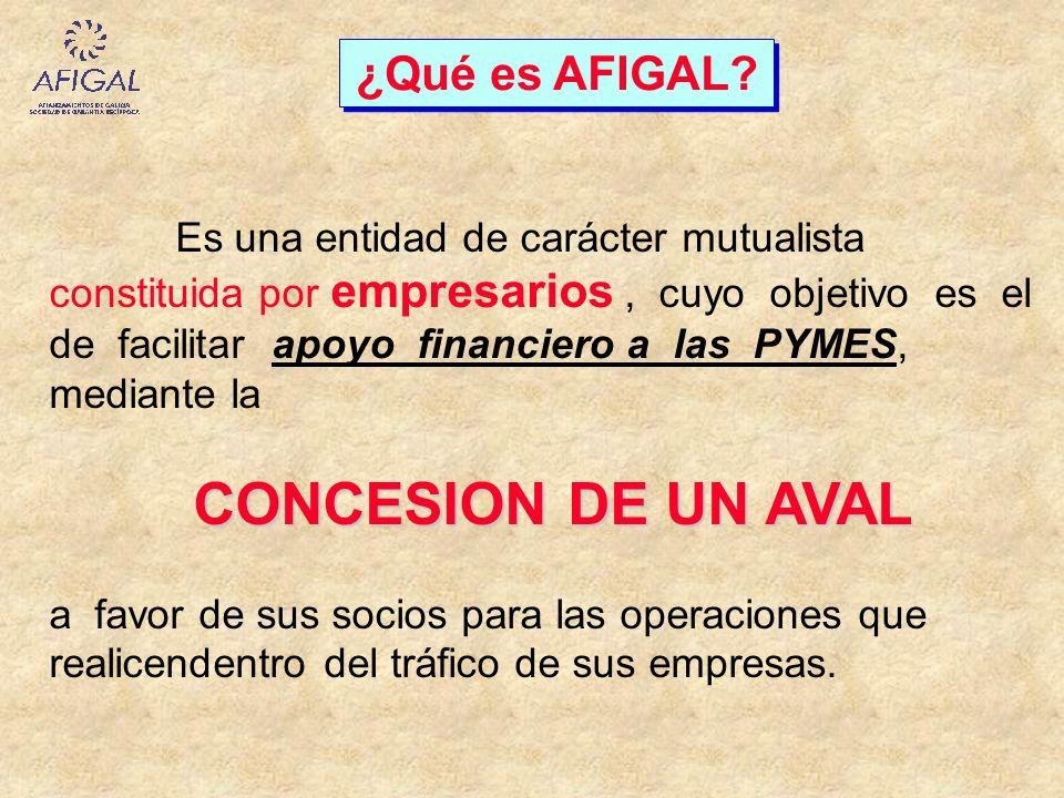 CONCESION DE UN AVAL ¿Qué es AFIGAL