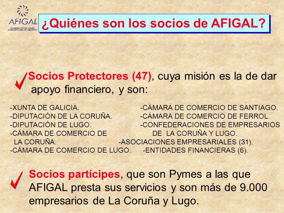 ¿Quiénes son los socios de AFIGAL