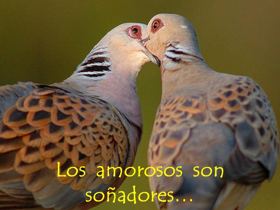 Los amorosos son soñadores…