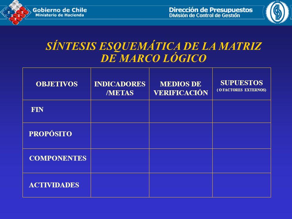 SÍNTESIS ESQUEMÁTICA DE LA MATRIZ DE MARCO LÓGICO