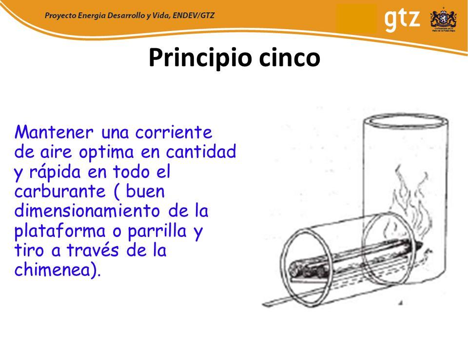 Principio cinco