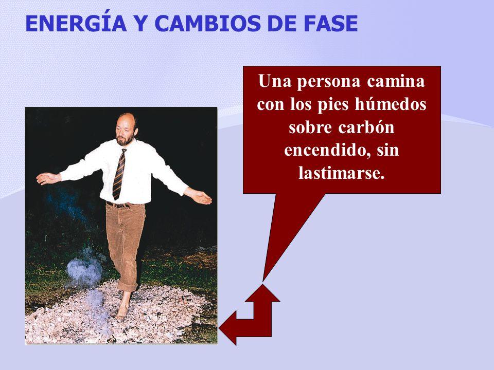 ENERGÍA Y CAMBIOS DE FASE
