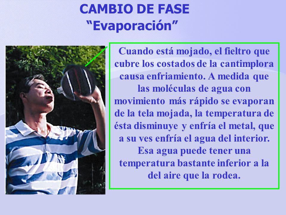CAMBIO DE FASE Evaporación