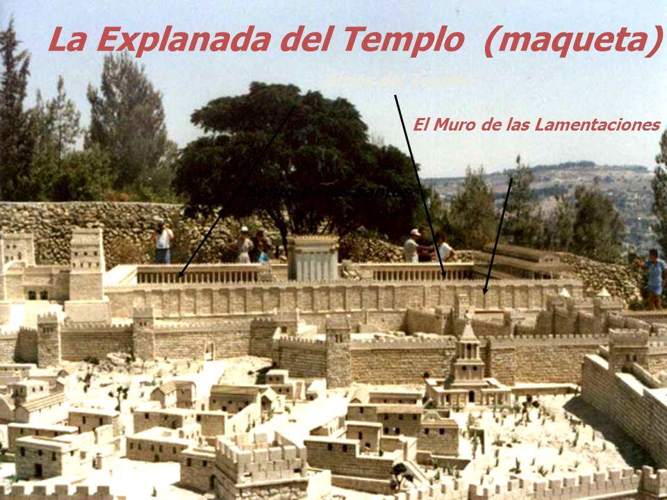 La Explanada del Templo (maqueta)