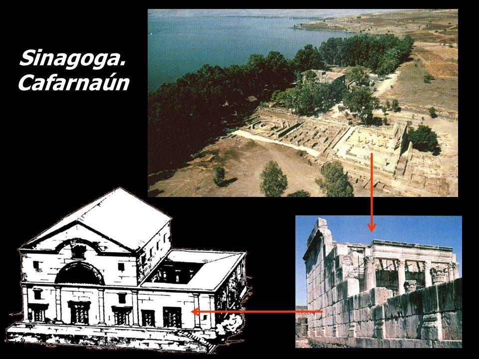 Sinagoga. Cafarnaún