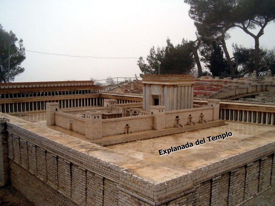 Explanada del Templo