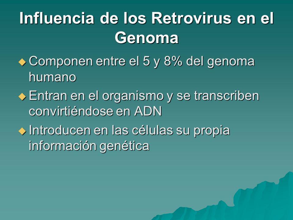 Influencia de los Retrovirus en el Genoma