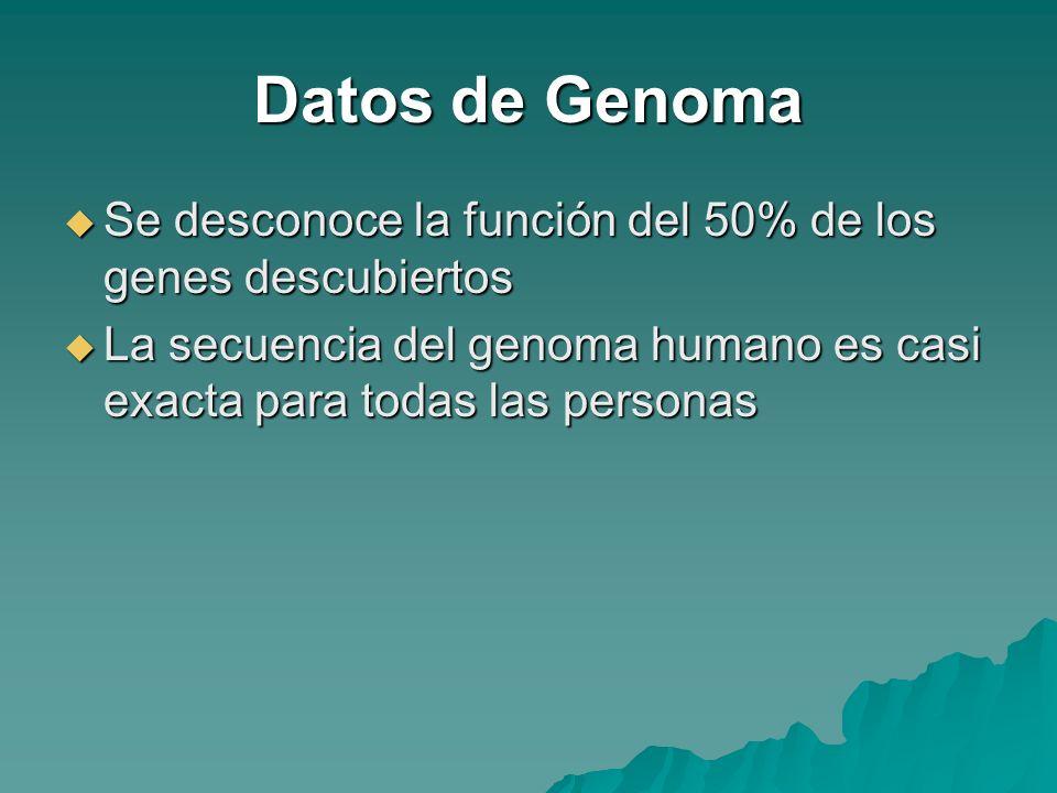 Datos de GenomaSe desconoce la función del 50% de los genes descubiertos.