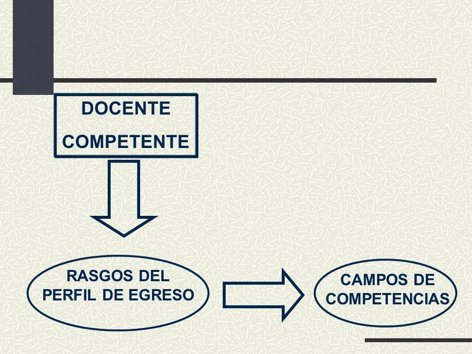 RASGOS DEL PERFIL DE EGRESO CAMPOS DE COMPETENCIAS
