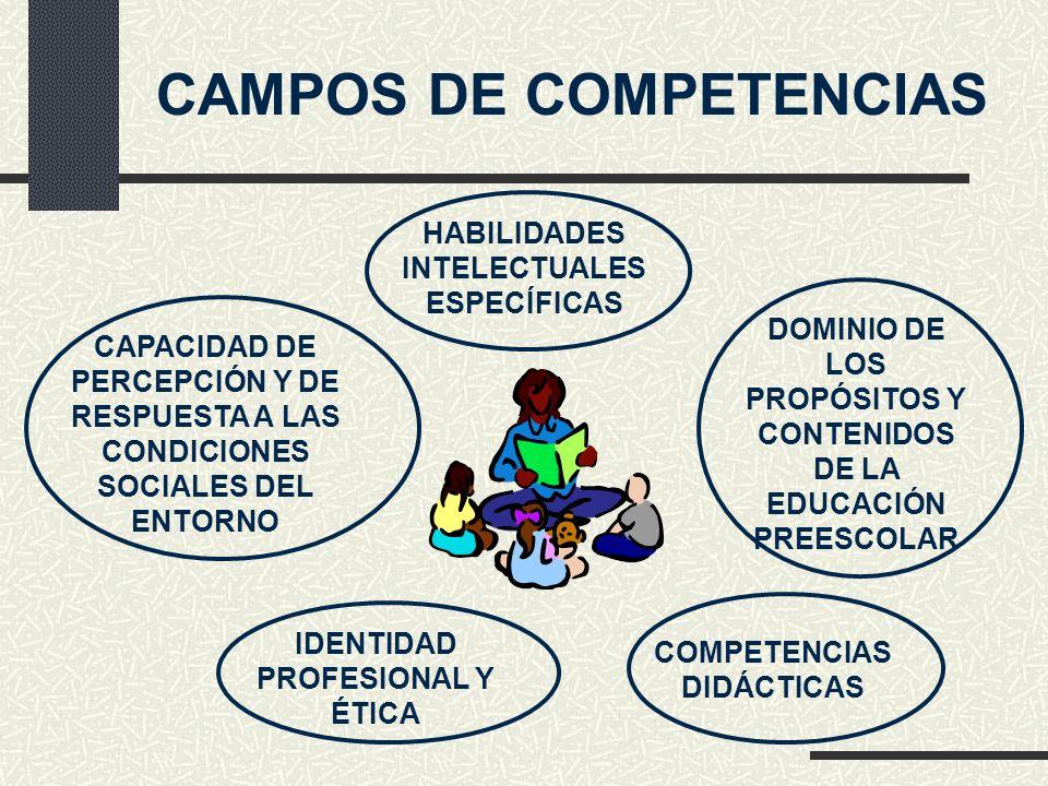 CAMPOS DE COMPETENCIAS
