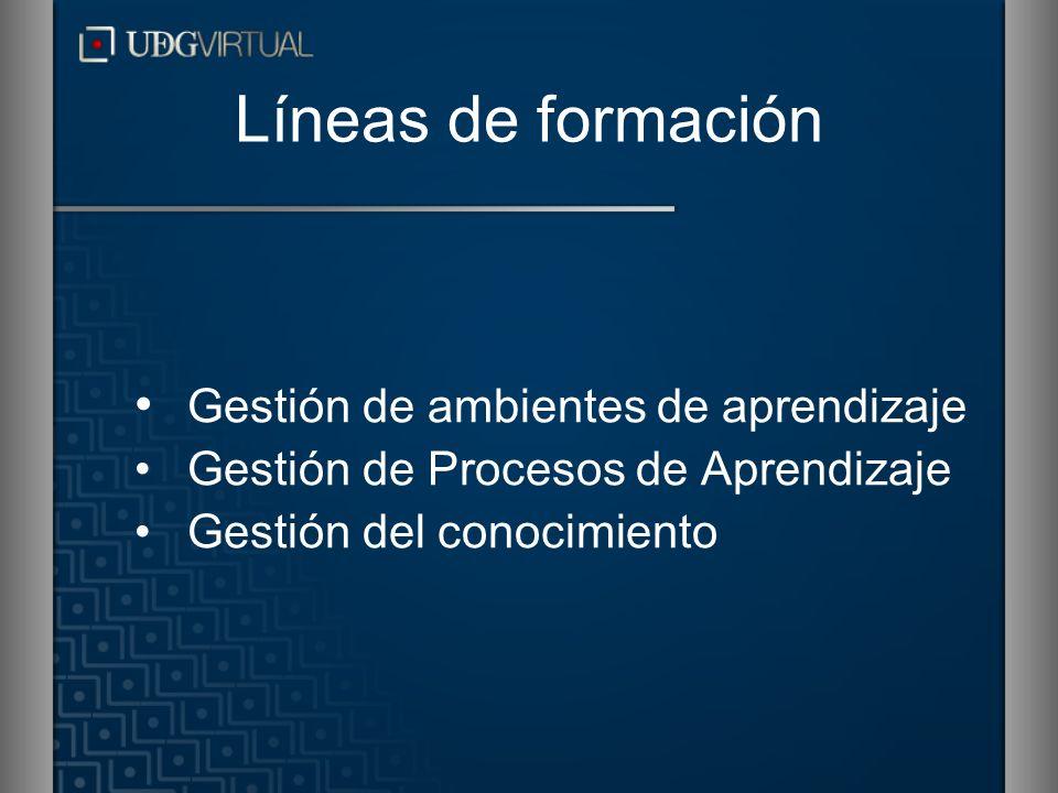 Líneas de formación Gestión de ambientes de aprendizaje